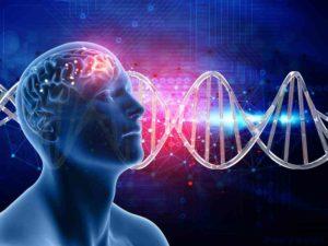 L'apprentissage : notre cerveau, l'eau, nos émotions et notre motivation.